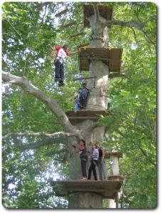 les_aventuriers_de_st_jean.accrobranches.tourisme-leboulou